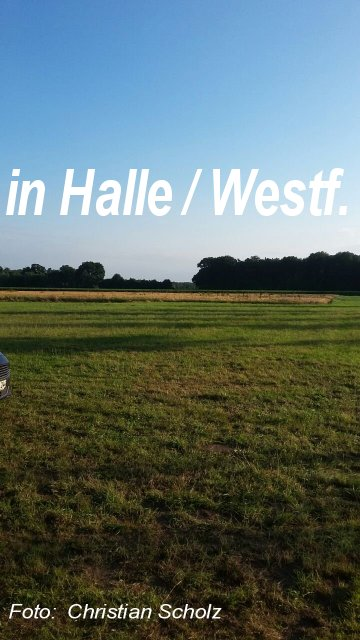 Halle 2017 (76) Scholz